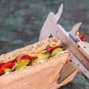 Dieta karnirowa - czy warto ją stosować Poznaj fakty, a nie mity